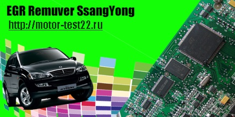 Утилита SsangYong EGR Remuver, рис. 1